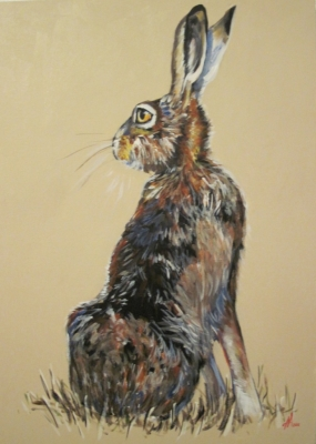Hare In The Field (acrylic on canvas unframed 50 x 70cm) £400 plus delivery by