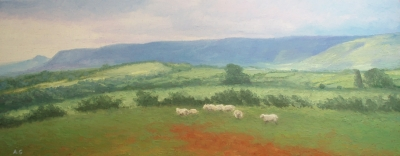 Welsh Border Pastures (oil on board unframed 100 x 40cm) £450 plus delivery by Andrew Grisman