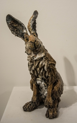 Hare Sitting by Phil Hayes