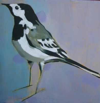 Pied Wagtail on mauve by Christopher Rainham
