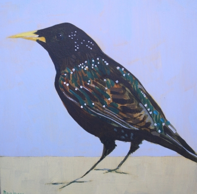 Starling  and Prozac by Christopher Rainham