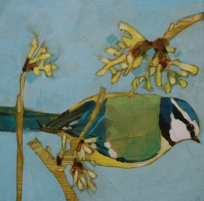 Blue Tit and Witchhazel  by Christopher Rainham