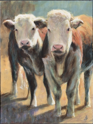 Two Young Herefords    by Jonathan Sant