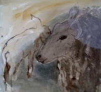 Ewe with Lamb (ink & watercolour ) Sold