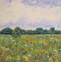 Summer Glory II; Eades Meadow (oil on canvas unframed 40 x 40cm) Sold