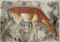 Impala (oil on board framed 60 x 50cm)  £400 plus delivery