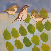 The Warblers, Thrush, on Bramble Leaves