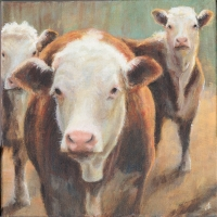 Young Herefords  by Jonathan Sant
